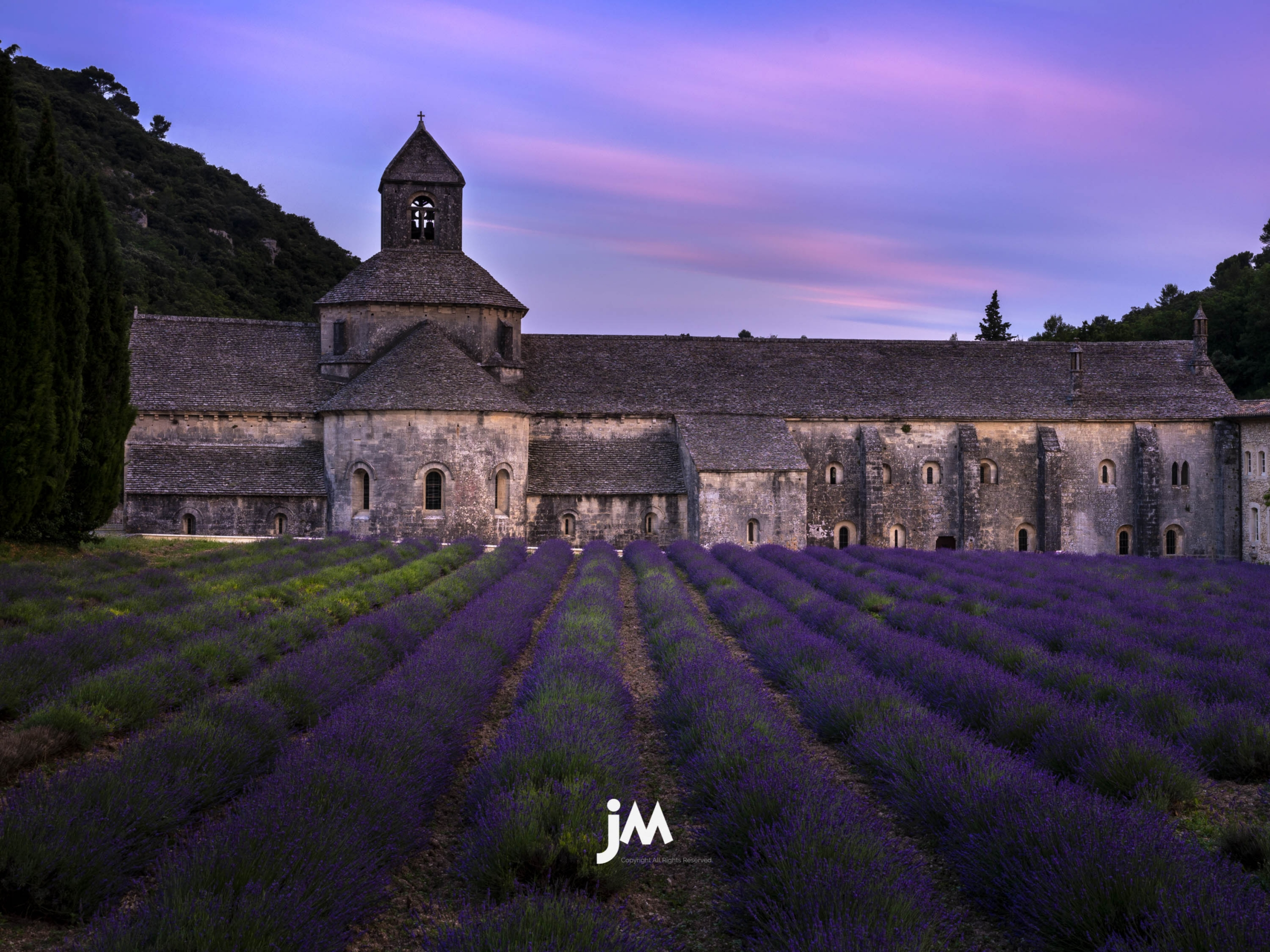 France, Provence Lavender Field